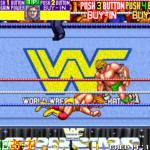 WWF Wrestle Fest (Mame)