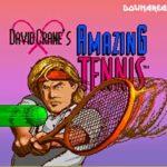 David Cranes Amazing Tennis Snes Rom
