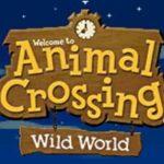 Animal Crossing Wild World NDS Rom