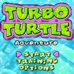 Turbo Turtle Adventure GBA Rom