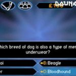 Who Wants to be a Millionaire GBA Rom