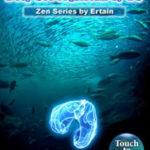 Deep Sea Aquarium NDS Rom