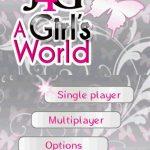J4G a Girls World NDS Rom