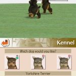 Nintendogs Dalmation and Friends NDS Rom