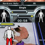 WWE Smackdown Vs Raw 2009 NDS Rom