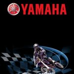 Yamaha Supercross NDS Rom